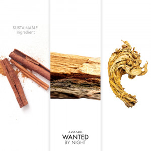 Wanted by Night EDP Comunes
